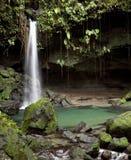 多明尼加鲜绿色池 免版税库存图片