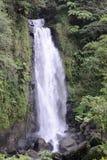 多明尼加trafalgar瀑布 库存照片