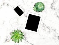 多汁植物压片个人计算机电话办公室桌舱内甲板位置 免版税库存图片