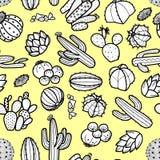 多汁植物和仙人掌在黑概述在淡色黄色 库存例证
