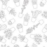 多汁植物和仙人掌无缝的样式背景 免版税库存照片