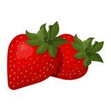 多汁草莓的传染媒介例证 库存照片