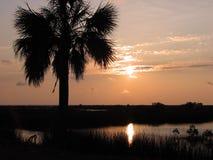 多沼泽的支流反映 免版税图库摄影