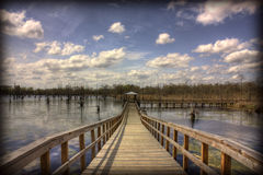 多沼泽的支流黑色码头 库存图片
