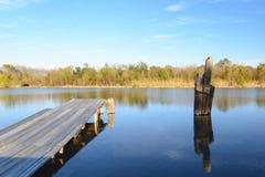 多沼泽的支流Lafourche,路易斯安那 免版税库存照片