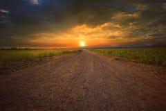 多灰尘的路透视美好的土地scape对太阳集合天空wi的 免版税库存照片