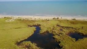 多瑙河三角洲的沼泽地栖所,罗马尼亚,鸟瞰图 股票录像