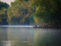 多瑙河三角洲,图尔恰,罗马尼亚 免版税库存图片