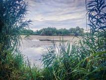 多瑙河三角洲和蓝色梦想幻想风景视图上色了剧烈的天空在日落 库存照片