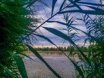多瑙河三角洲和蓝色梦想幻想风景视图上色了剧烈的天空在日落 库存图片