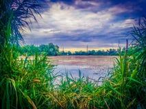 多瑙河三角洲和蓝色梦想幻想风景视图上色了剧烈的天空在日落 免版税库存图片