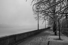 多瑙河在布达佩斯在冬天 免版税库存照片