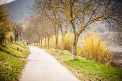 多瑙河在秋天 库存照片