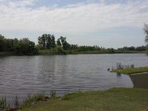 多瑙河tisa树自然渔河 免版税图库摄影