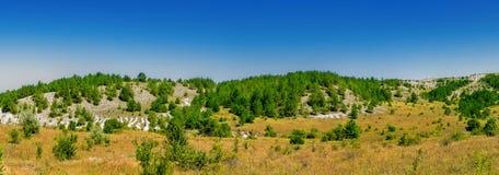 多白粉植物群保留 免版税库存图片