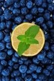 水多的一半与绿色的柠檬在蓝莓背景离开 新鲜的蓝莓当纹理背景和一个黄色一半柠檬 免版税库存照片
