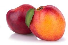 水多的成熟油桃 库存图片