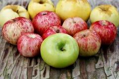 水多的成熟苹果 免版税库存照片