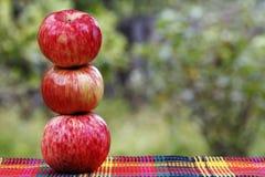 水多的成熟苹果 库存图片