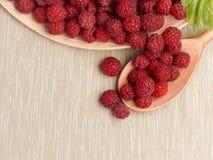 水多的成熟莓 免版税库存照片