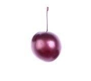 水多的李子特写镜头  在白色背景隔绝的一个唯一紫色李子 自创汁液的莓果 美满的果子石榴红色种子夏天 免版税库存图片