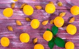 水多的杏子 图库摄影