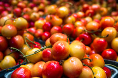 水多的樱桃在市场上 图库摄影