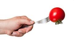 水多的红色蕃茄,所有自然 免版税图库摄影