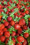 水多的草莓无缝的纹理 免版税图库摄影