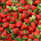 水多的草莓纹理  图库摄影