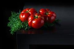 水多的蕃茄用在木黑暗的背景的莳萝 库存图片