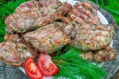 水多的里脊肉牛排用新鲜的蕃茄 图库摄影