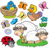 多种动物春天 免版税库存照片