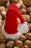 多种圣诞节帽子胡说的圣诞老人主题 免版税库存图片