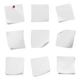 多种在空白背景的小叶空白白皮书的收集。 库存图片