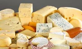 多种干酪可口类型 免版税图库摄影