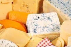 多种干酪可口类型 库存照片
