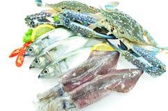 多种海鲜 免版税库存图片