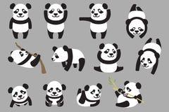 多种熊猫 免版税库存图片