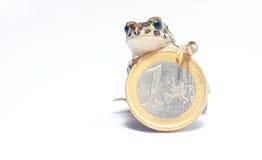 多种硬币和疯狂的青蛙 免版税库存图片