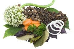 多种种类香料 免版税库存图片