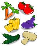 多种蔬菜 皇族释放例证