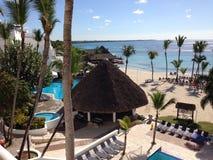 多米尼加共和国棕榈三绿色旅馆旅行旅馆植被植物群唐璜Boca奇卡天蓝色海沙人民 免版税库存照片