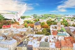 多米尼加共和国的大教堂、假定教会和利沃夫州,乌克兰的历史的中心的美丽的景色 免版税库存图片