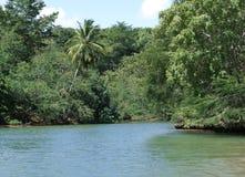 多米尼加共和国风景海滨 免版税库存照片
