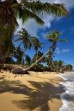 多米尼加共和国, Punta Cana 免版税库存图片