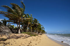 多米尼加共和国, Punta Cana 图库摄影