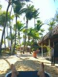 多米尼加共和国 图库摄影