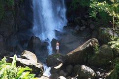 多米尼加落热带瀑布 库存照片