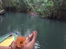 多米尼加水的全景 免版税库存图片